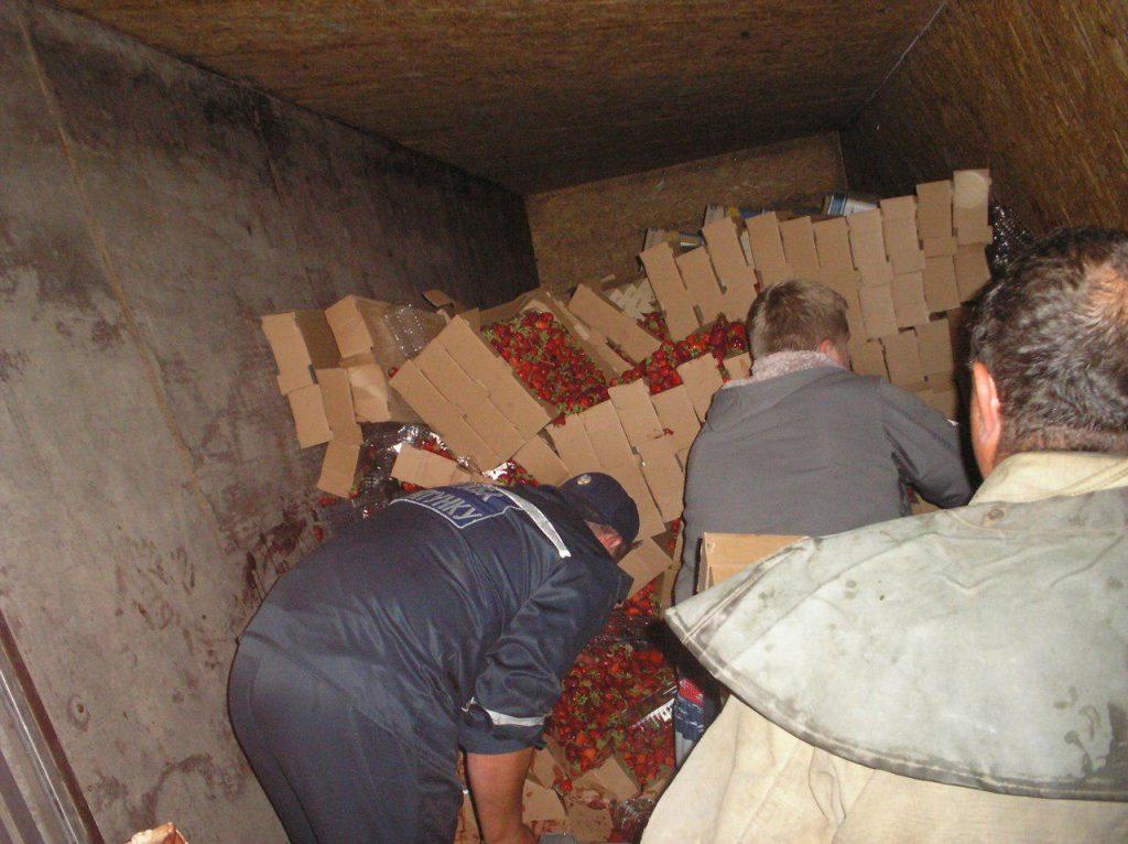 Под Запорожьем перевернулся грузовик с тоннами клубники