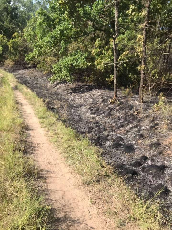 Минимум 3 поджога: Хортице снова горит