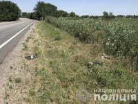 Под Запорожьем водитель ночью насмерть сбил 18-летнего парня и сбежал