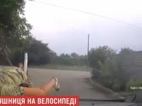 В Запорожье пенсионерка на велосипеде протаранила головой лобовое стекло полицейского авто (Видео)