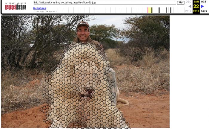 Фактчекинг: Фото Кальцева с убитым львом были сделаны в 2012 году