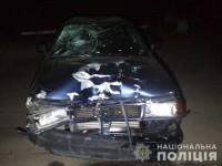 В Запорожской области молодой парень под наркотиками и алкоголем насмерть сбил двоих велосипедистов