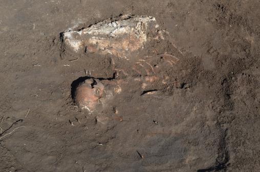 Под запорожским селом обнаружили захоронение средневекового всадника