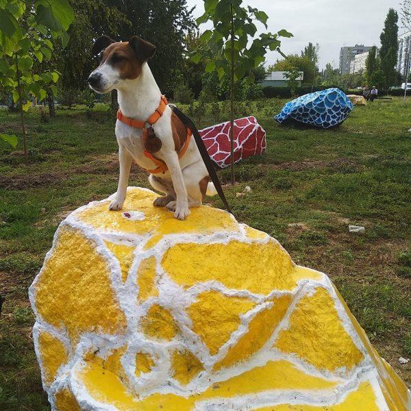 На Бабурке художница превратила серые камни в арт-объект (Фото)