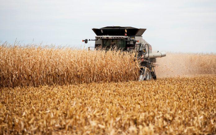 Запорожская область заняла первое место по объему урожая