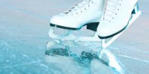 Запорожские депутаты не поддержали строительство ледовой арены