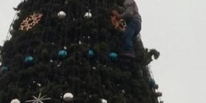 Пьяный житель Запорожской области залез на главную елку ради фото