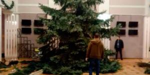 Сезон стартовал: возле запорожского театра срубили две огромные ели (Видео)