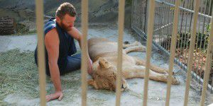 В Запорожской области лечат зверей, которые стали жертвами политических интриг (ВИДЕО)