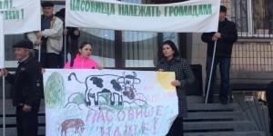 Запорожских селян привезли митинговать под стены Госгеокадастра на автобусах