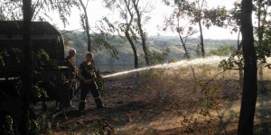 На Хортице снова сгорел большой участок заповедной территории