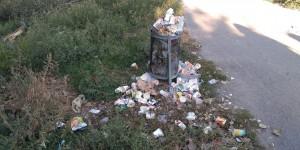 Запорожье тонет в мусоре: горожане собирают подписи за более вместительные и прочные урны