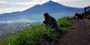 """Запорожец месяц проживший на Бали: """"Я ошибался, когда летел за пляжным отдыхом"""""""