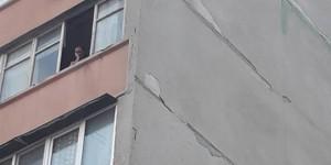 В Запорожье женщина выкинула собаку с 7-го этажа - живодерку увезла полиция