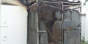 В центре Запорожья горел киоск