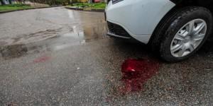 Агрессивный запорожец напал в кафе на официантку и разбил голову в авто охраны (Фото)