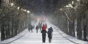 Чиновники заявили, что Запорожская область готова к мощному снегопаду